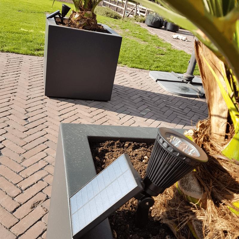 grondspot solar met spies 2 watt - sfeerfoto