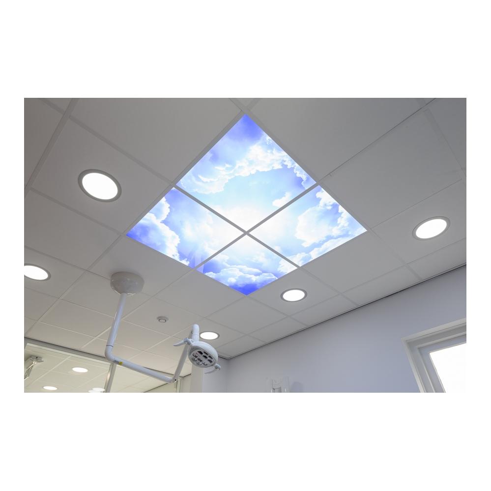 wolkenplafond- 595 x 595 mm- verdeeld over 4 panelen